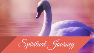 Spiritual Journey and Healing with Reiki at Reiki Montreal